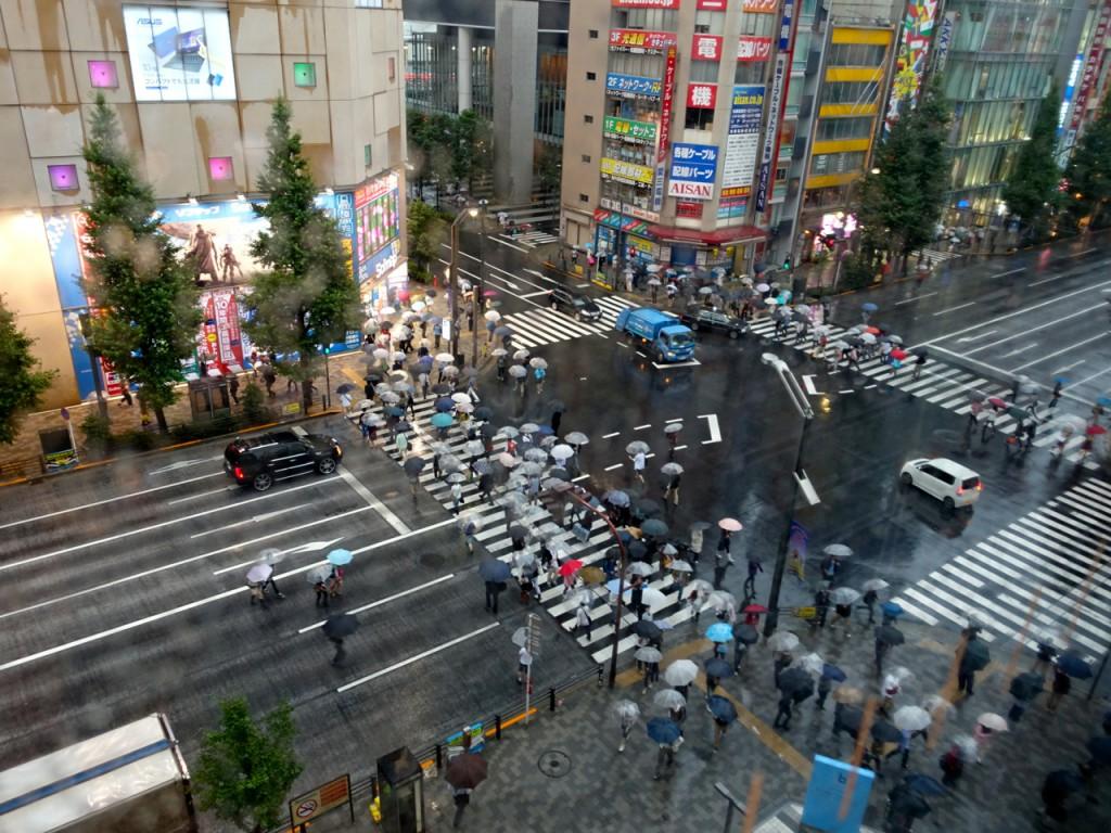 YodobashiCamera201401