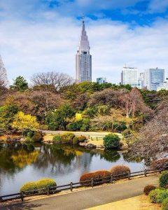 Shinjuku-Gyoen-in-tokyo-japan-vertical